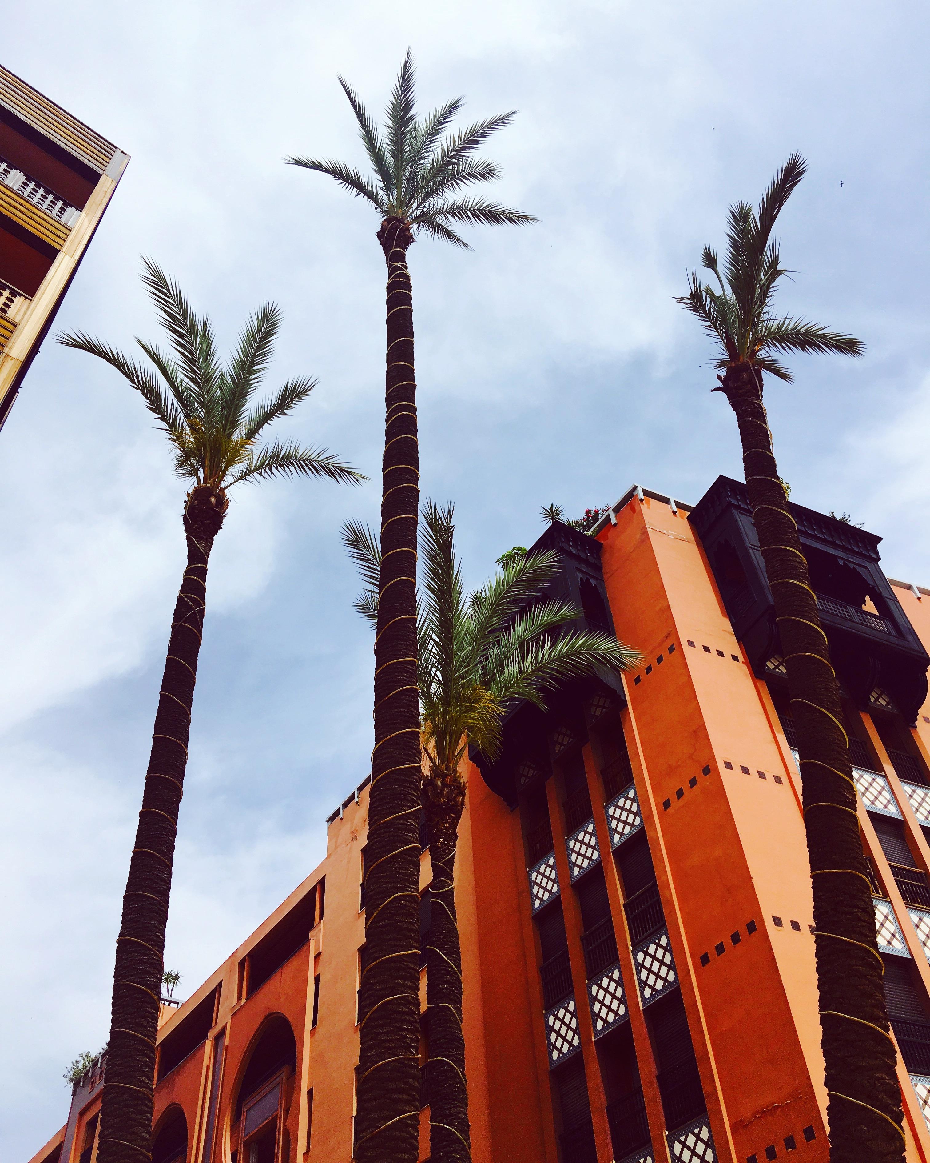 Nieuw Marrakech