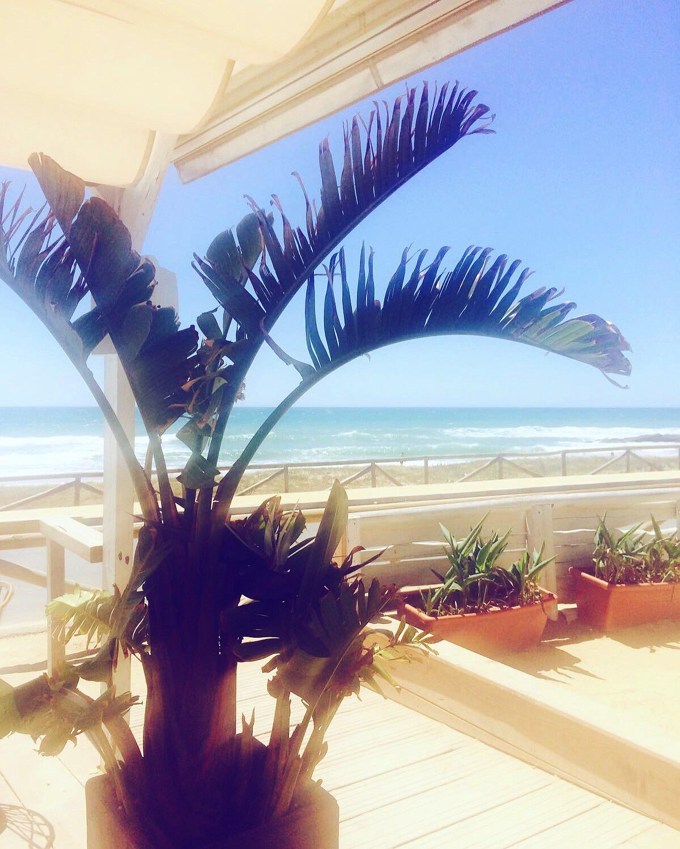 Beach Playa el palmar